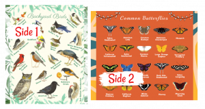 Butterfly Bird Species Blanket Learning Children Names
