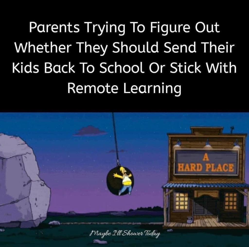 homeschool virtual teaching lesson plans