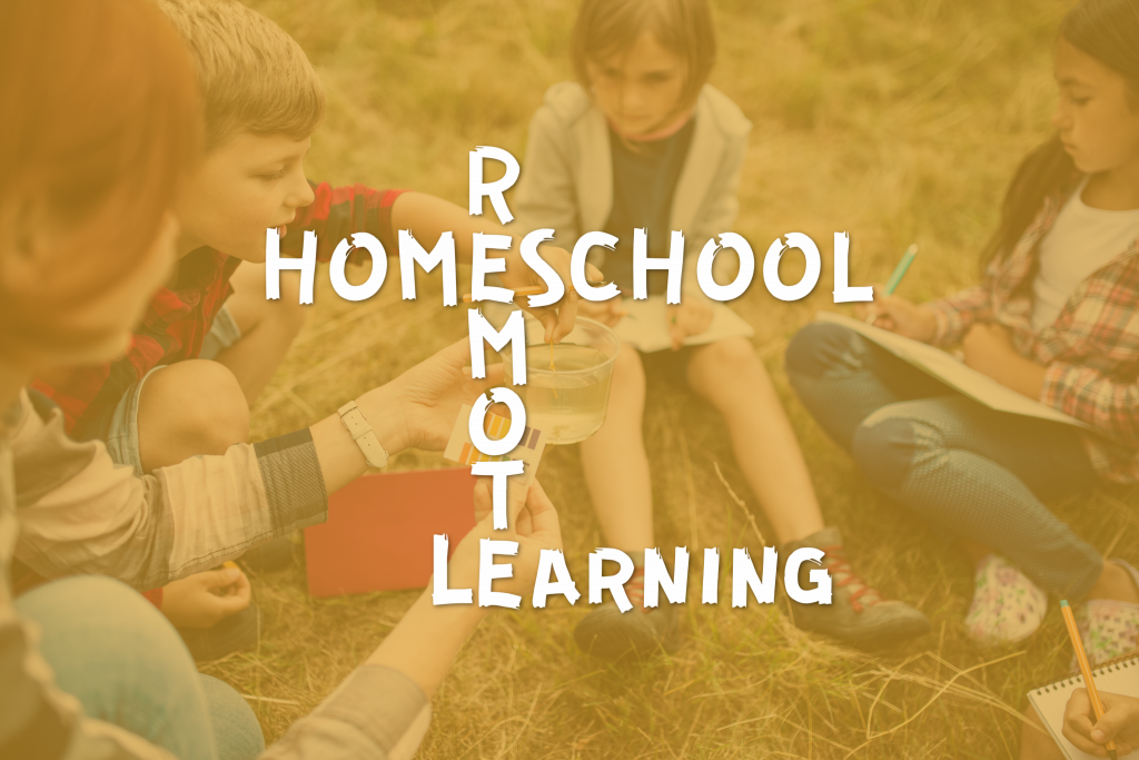 remote virtual ideas homeschooling cottage